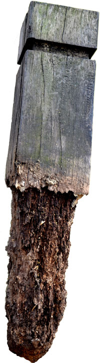 Rotted Wood Fence Post